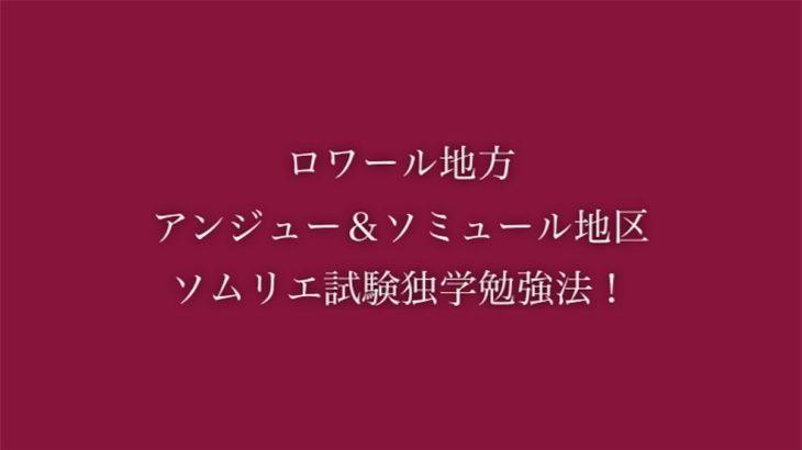 ロワール地方アンジュー&ソミュール地区のソムリエ試験独学勉強法!