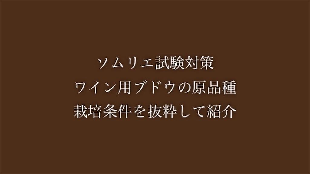 f:id:yumemiraitunagu:20200501220517j:plain
